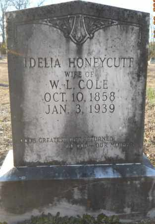 COLE, IDELIA - Hempstead County, Arkansas | IDELIA COLE - Arkansas Gravestone Photos