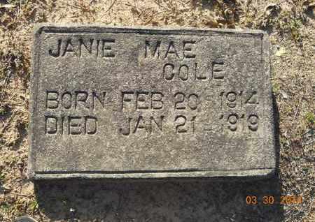 COLE, JANIE MAE - Hempstead County, Arkansas | JANIE MAE COLE - Arkansas Gravestone Photos
