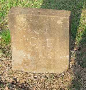 COLE, MITCHELL - Hempstead County, Arkansas | MITCHELL COLE - Arkansas Gravestone Photos