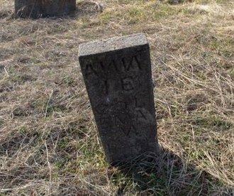 COLEMAN, ANNIE - Hempstead County, Arkansas | ANNIE COLEMAN - Arkansas Gravestone Photos