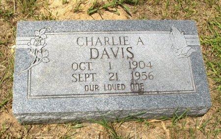 DAVIS, CHARLIE A - Hempstead County, Arkansas | CHARLIE A DAVIS - Arkansas Gravestone Photos