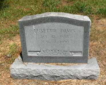 DAVIS, LUSETTIE - Hempstead County, Arkansas | LUSETTIE DAVIS - Arkansas Gravestone Photos