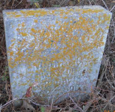 DAVIS, MIAMA G - Hempstead County, Arkansas | MIAMA G DAVIS - Arkansas Gravestone Photos