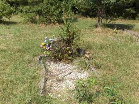 EDWARDS, CLAUDINE - Hempstead County, Arkansas | CLAUDINE EDWARDS - Arkansas Gravestone Photos