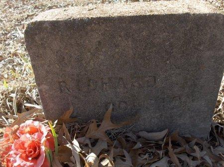 GOLSTON, RICHARD - Hempstead County, Arkansas   RICHARD GOLSTON - Arkansas Gravestone Photos