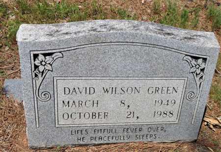 GREEN, DAVID WILSON - Hempstead County, Arkansas | DAVID WILSON GREEN - Arkansas Gravestone Photos