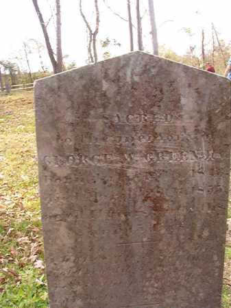 GREEN, GEORGE W - Hempstead County, Arkansas   GEORGE W GREEN - Arkansas Gravestone Photos