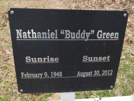 GREEN, NATHANIEL (CLOSEUP) - Hempstead County, Arkansas   NATHANIEL (CLOSEUP) GREEN - Arkansas Gravestone Photos