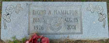 HAMILTON, DAVID A - Hempstead County, Arkansas   DAVID A HAMILTON - Arkansas Gravestone Photos
