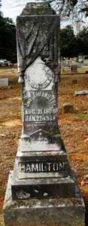 HAMILTON, JOHN T - Hempstead County, Arkansas   JOHN T HAMILTON - Arkansas Gravestone Photos