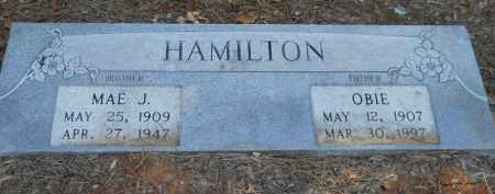 HAMILTON, OBIE - Hempstead County, Arkansas | OBIE HAMILTON - Arkansas Gravestone Photos