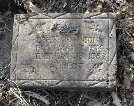 JOHNSON, ESSIE - Hempstead County, Arkansas | ESSIE JOHNSON - Arkansas Gravestone Photos