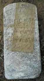 MCFADDEN, MARGARET I - Hempstead County, Arkansas | MARGARET I MCFADDEN - Arkansas Gravestone Photos