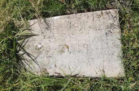 MCFADDEN, OLA - Hempstead County, Arkansas   OLA MCFADDEN - Arkansas Gravestone Photos