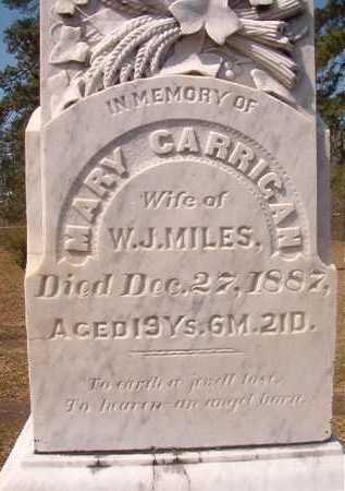 MILES, MARY - Hempstead County, Arkansas | MARY MILES - Arkansas Gravestone Photos