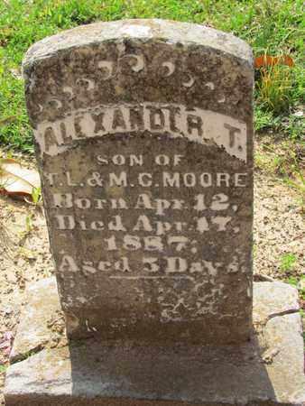 MOORE, ALEXANDER T - Hempstead County, Arkansas | ALEXANDER T MOORE - Arkansas Gravestone Photos