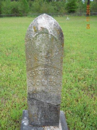 NOLEN, GERTRUDE - Hempstead County, Arkansas | GERTRUDE NOLEN - Arkansas Gravestone Photos
