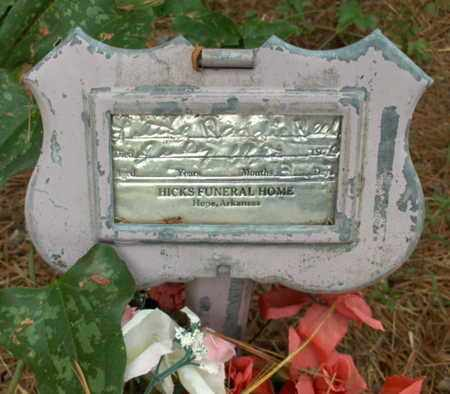 REED, RANDY - Hempstead County, Arkansas | RANDY REED - Arkansas Gravestone Photos