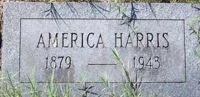SCOTT, AMERICA - Hempstead County, Arkansas | AMERICA SCOTT - Arkansas Gravestone Photos