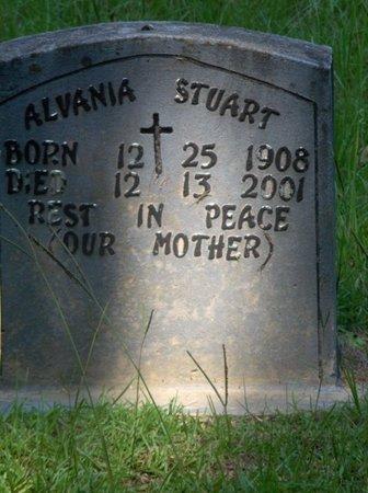 STUART, ALVANIA - Hempstead County, Arkansas | ALVANIA STUART - Arkansas Gravestone Photos