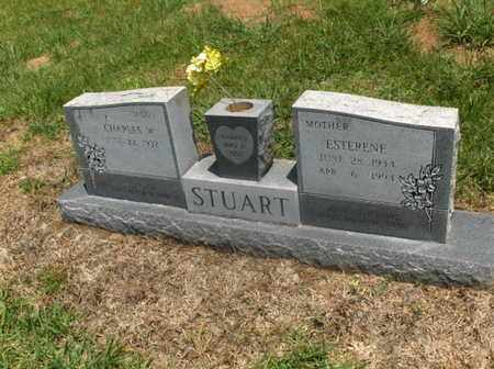 STUART, ESTERENE - Hempstead County, Arkansas | ESTERENE STUART - Arkansas Gravestone Photos