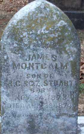 STUART, JAMES MONTCALM - Hempstead County, Arkansas | JAMES MONTCALM STUART - Arkansas Gravestone Photos