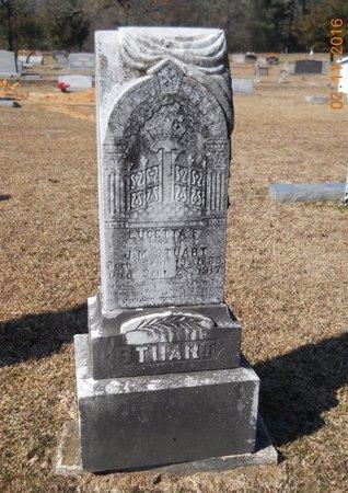 STUART, LUCETTA - Hempstead County, Arkansas | LUCETTA STUART - Arkansas Gravestone Photos