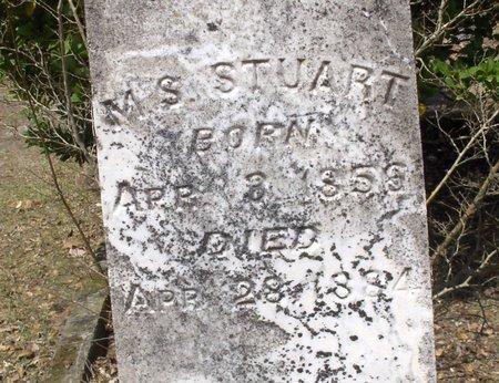 STUART, M. S. (CLOSE UP) - Hempstead County, Arkansas | M. S. (CLOSE UP) STUART - Arkansas Gravestone Photos