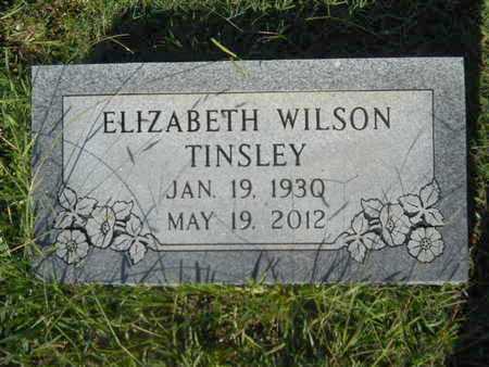 WILSON, ELIZABETH - Hempstead County, Arkansas   ELIZABETH WILSON - Arkansas Gravestone Photos