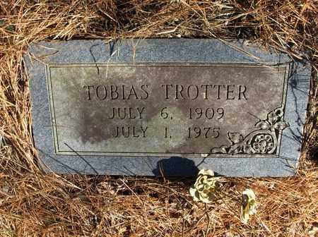 TROTTER, TOBIAS - Hempstead County, Arkansas | TOBIAS TROTTER - Arkansas Gravestone Photos