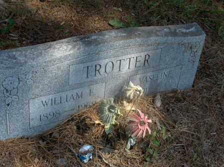 TROTTER, WILLIAM E - Hempstead County, Arkansas | WILLIAM E TROTTER - Arkansas Gravestone Photos