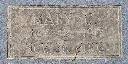 TURNER, MARY C (CLOSE UP) - Hempstead County, Arkansas | MARY C (CLOSE UP) TURNER - Arkansas Gravestone Photos