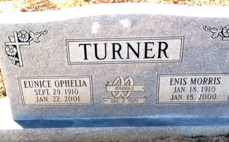 TURNER, ENIS MORRIS - Hempstead County, Arkansas | ENIS MORRIS TURNER - Arkansas Gravestone Photos