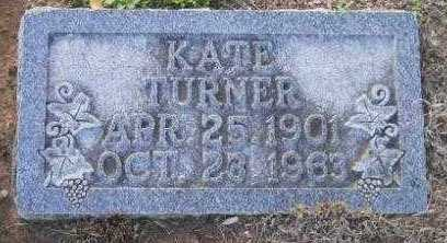TURNER, KATE - Hempstead County, Arkansas | KATE TURNER - Arkansas Gravestone Photos