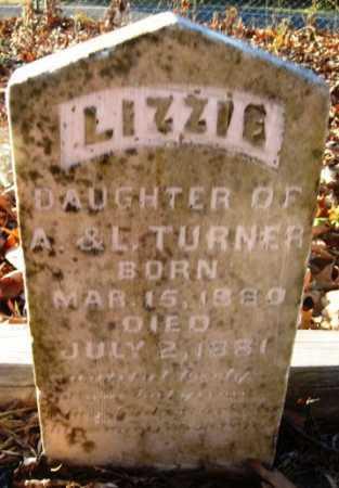 TURNER, LIZZIE - Hempstead County, Arkansas | LIZZIE TURNER - Arkansas Gravestone Photos