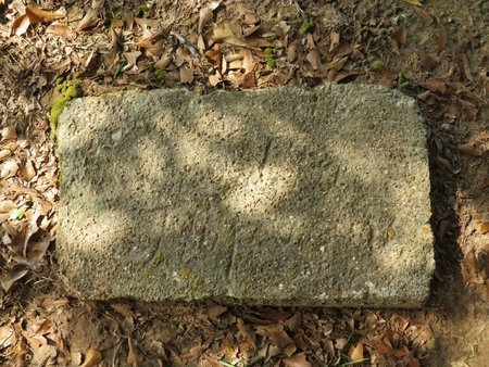 HOPSON, GRANDPA - Hempstead County, Arkansas | GRANDPA HOPSON - Arkansas Gravestone Photos