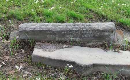 HAMILTON, LEWIS - Hempstead County, Arkansas   LEWIS HAMILTON - Arkansas Gravestone Photos