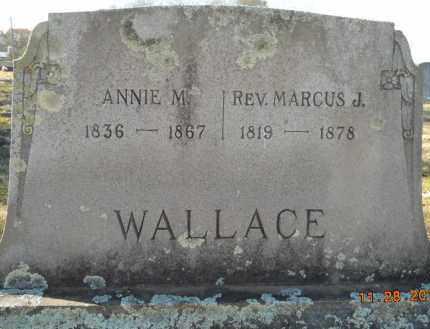 WALLACE, ANNIE M - Hempstead County, Arkansas | ANNIE M WALLACE - Arkansas Gravestone Photos