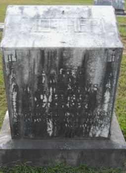 WILLIAMS, ALICE - Hempstead County, Arkansas | ALICE WILLIAMS - Arkansas Gravestone Photos