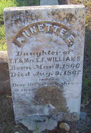 WILLIAMS, ANNETTE E - Hempstead County, Arkansas | ANNETTE E WILLIAMS - Arkansas Gravestone Photos