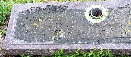 WILLIAMS, CHARLES A - Hempstead County, Arkansas | CHARLES A WILLIAMS - Arkansas Gravestone Photos