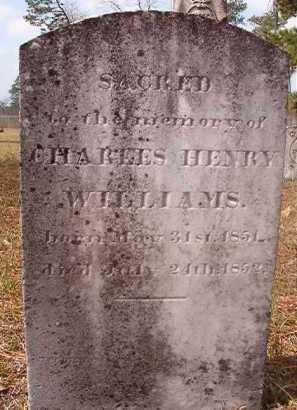 WILLIAMS, CHARLES HENRY - Hempstead County, Arkansas | CHARLES HENRY WILLIAMS - Arkansas Gravestone Photos
