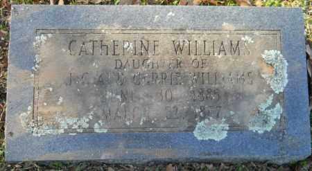 WILLIAMS, CATHERINE - Hempstead County, Arkansas   CATHERINE WILLIAMS - Arkansas Gravestone Photos