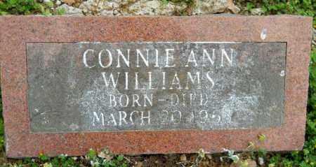 WILLIAMS, CONNIE ANN - Hempstead County, Arkansas | CONNIE ANN WILLIAMS - Arkansas Gravestone Photos