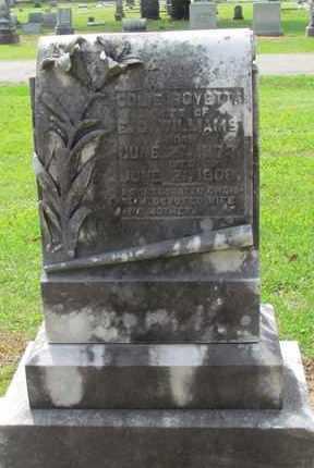 WILLIAMS, COLIE - Hempstead County, Arkansas   COLIE WILLIAMS - Arkansas Gravestone Photos