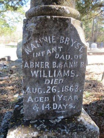 WILLIAMS, NANNIE BRYSE (CLOSE UP) - Hempstead County, Arkansas | NANNIE BRYSE (CLOSE UP) WILLIAMS - Arkansas Gravestone Photos