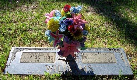 WILLIAMS, LUCY MAE - Hempstead County, Arkansas | LUCY MAE WILLIAMS - Arkansas Gravestone Photos