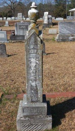 WILLIAMS, E.F. - Hempstead County, Arkansas   E.F. WILLIAMS - Arkansas Gravestone Photos