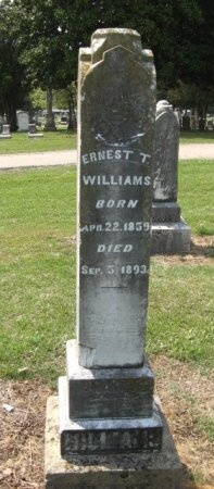 WILLIAMS, ERNEST THORN - Hempstead County, Arkansas | ERNEST THORN WILLIAMS - Arkansas Gravestone Photos