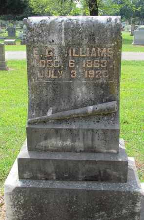 WILLIAMS, E G - Hempstead County, Arkansas   E G WILLIAMS - Arkansas Gravestone Photos
